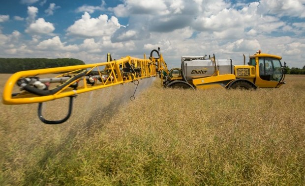 pesticida grano