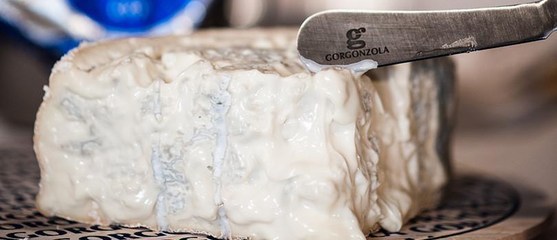 odore-gorgonzola-810x350