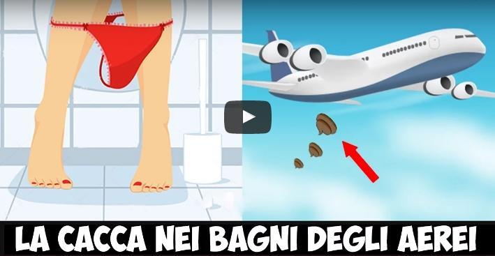 Che fine fa la cacca nei bagni degli aerei ecco un video - Cacca nel bagno ...